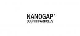 10-nanogap