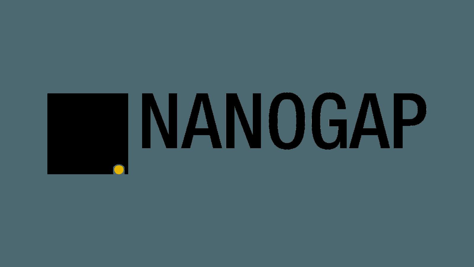 Nanogap logo